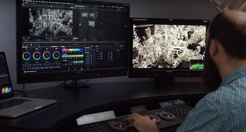 Flanders Scientific DM250 Monitor Driver for Mac Download