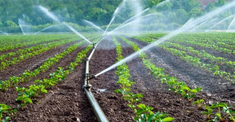 ATSC 3.0 broadcasters' future could be watering crops and turning on industrial lighting systems.