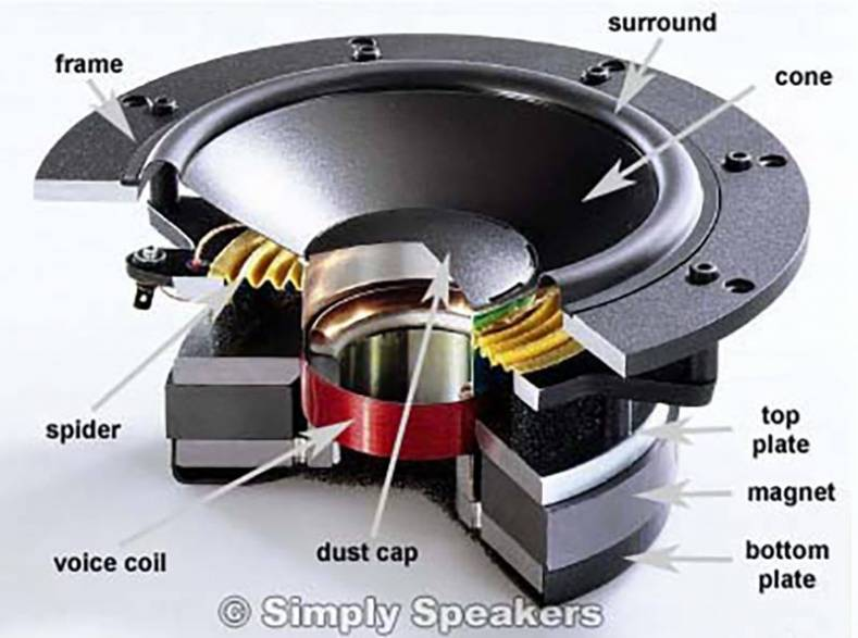 Wiring Diagram For Truma Motor Mover likewise Wiring Diagram For Truma Motor Mover moreover Car Speaker Wiring Diagram 6 also Bridge Speakers Wiring Diagram also Sony Car Audio  lifier Wiring Diagrams. on free sony xplod wiring diagram home theater subwoofer in
