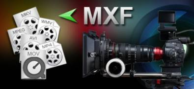 MXF is primarily used as a container wrapper, which helps prevent incompatibilities between manufacturers' gear.