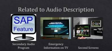The SAP channel is used for audio description.