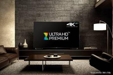 While some claim that video consumption will largely move to small hand-held devices, research shows that the much larger, higher image quality, home TV display will dominate for premium content.