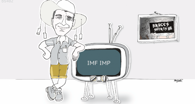 What is an IMF IMP?