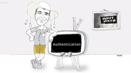 Authentication of internet users.