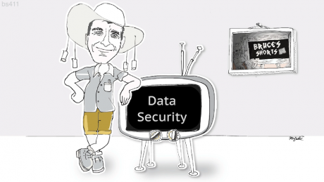 Bruce looks at data security