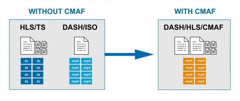 CMAF was designed to allow fragmented .mp4 containers to be referenced by both Apple HLS and DASH.