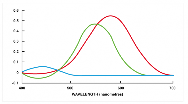 Fig. 1. The responses of the three receptors in the HVS are shown as a function of wavelength. The responses of individuals will differ from this. Note the limited response to blue light.