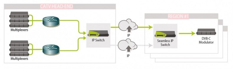IP redundancy in CATV environment