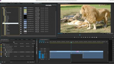 Adobe Interplay browse panel