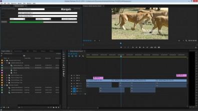 Adobe Interplay export panel