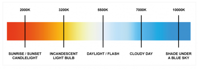 Dia 2 - Our perception of light changes color depending on the time of day, or source.