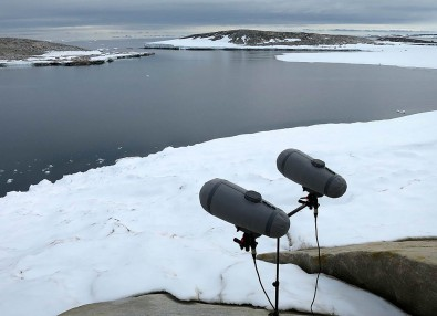 DPA microphones in the Antarctic.