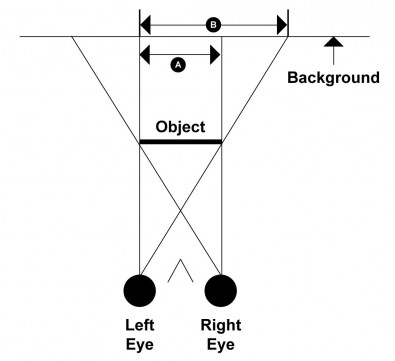Figure 3. Seen with both eyes, only area A of the background is invisible, but with the left eye alone, area B is invisible. The size of an object is partially judged by the way it obscure the background.