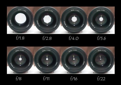 This image illustrates how changing the aperture controls how much light gets to the camera sensor. (Image courtesy gpsphotography.com.)<br />