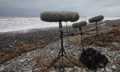 Bring a sufficient number and type of microphones, and cable, lots of cable.