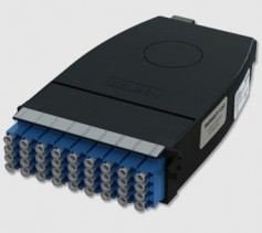 Figure 2. Type A cassette. Click to enlarge.