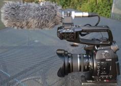 Rode NTG-3 shotgun mounted on Canon camera.