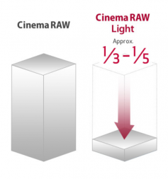 Figure 12: Canon Cinema Light Compression. Click to enlarge.