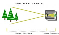 Focal length tells us the angle of view—how much of the scene will be captured—and the focal length or magnification—how large individual elements will be. The longer the focal length, the narrower the angle of view and the higher the magnification. The shorter the focal length, the wider the angle of view and the lower the magnification. (Courtesy Nikonusa.)<br />